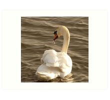 The Swan With The Runny Nose Art Print