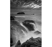 Motuotau Monotone Rush Photographic Print