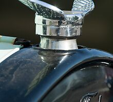 1925 Ford Model T Hood Ornament by Jill Reger