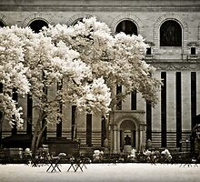 New York City - Bryant Park Infrared by Kaitlin Kelly