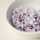Bowl of Lilacs by slacey