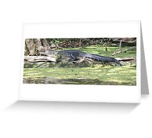 Lazy Gator Greeting Card