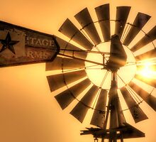Big Fan of Sunset by Bob Larson