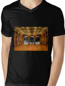 Bethesda Arcade Snow Mens V-Neck T-Shirt