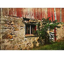 Limestone Foundation Photographic Print