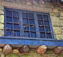 Window Without a View by John Butler