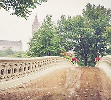 Rainy On Bow Bridge by Randy  LeMoine