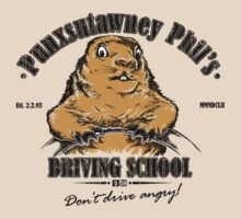 Punxsutawney Phil's Driving School by Vincent Carrozza