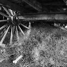 Wagon Wheel - Monte Christo Homestead, Junee NSW Australia by Bev Woodman