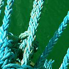 in the blue knots  by patricemassa
