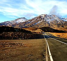 Road to Mt. Ruapehu by hans p olsen