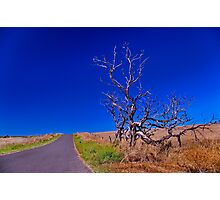 """""""Blue Skies from Here On"""" Photographic Print"""