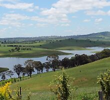 Landscape view of Lake Carcoar by Steven Cousley