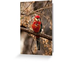 """""""Young One"""" Greeting Card"""