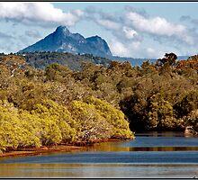 Cudgen Creek & Mt Warning  3 by John Van-Den-Broeke