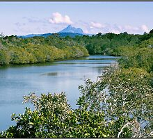 Cudgen Creek & Mt Warning 1 by John Van-Den-Broeke