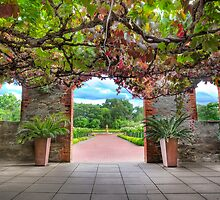 Grant Burge Winery by Shannon Rogers