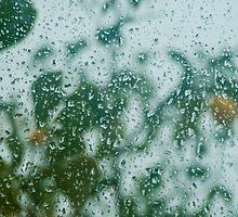 Rainy Day by Clockworkmary