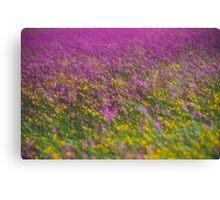 7 ★★★★★ . Frühling in den Alpen . The Flowers of the Alps . The Dachstein Mountains . Austria. Doktor Faustus. Favorites: 3 Views: 554 . Danke ! Canvas Print