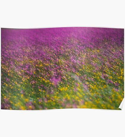 7 ★★★★★ . Frühling in den Alpen . The Flowers of the Alps . The Dachstein Mountains . Austria. Doktor Faustus. Favorites: 3 Views: 554 . Danke ! Poster
