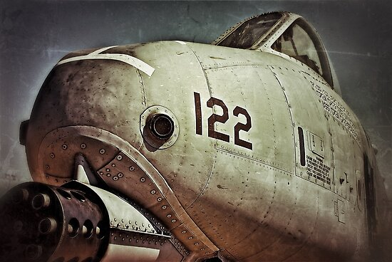 A-10 Warthog by Kingstonshots