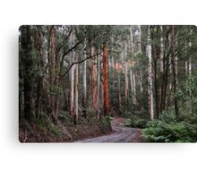 Towering Mountain Ash Canvas Print