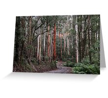 Towering Mountain Ash Greeting Card