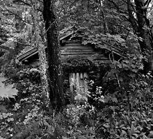 Cabin, Glaskogen, Sweden by itchingink