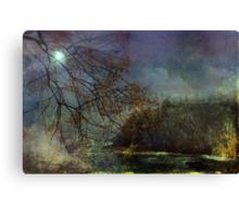 Moonlight on the Coast  Canvas Print