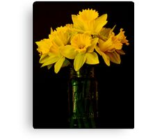 Daffy Still Life Canvas Print