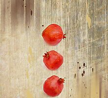 Pomegranate by Elaine  Manley