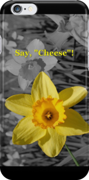 "Say, ""Cheese""! iPhone Case by Betty Northcutt"