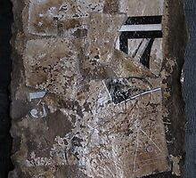 Barks of time - Les Ecorces du temps #9 by Pascale Baud