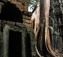 Ta Prohm tree roots and door. by Phil Bower