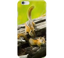Chipmunks playing iPhone Case/Skin