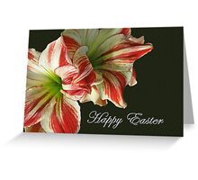 Happy Easter Red and White Amaryllis Greeting Card