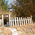 Mystery Gate by nikspix