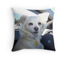 Car Ride? I'll Drive!!! Throw Pillow