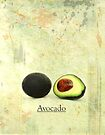 Avocado by Elaine  Manley
