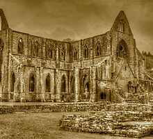 Tintern Abbey sepia HDR  by James Taylor