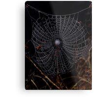 Cobweb Metal Print