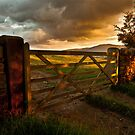 Under Summer Clouds by Brian Kerr