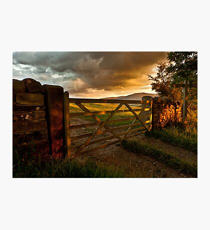 Under Summer Clouds Photographic Print