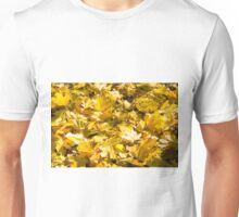 Selective focus on a set of yellow autumn fallen maple leaves Unisex T-Shirt