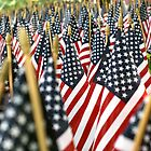 Sea of U.S. Flags by Slaughter58