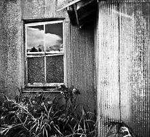 Anyone Home????? by Kathryn Steinhardt