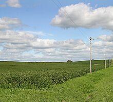 Nebraska Country Road by Tony Weatherman