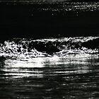 wave. waubs bay, bicheno, tasmania by tim buckley | bodhiimages