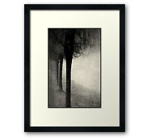 Twins in the Forest Framed Print
