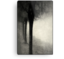 Twins in the Forest Metal Print